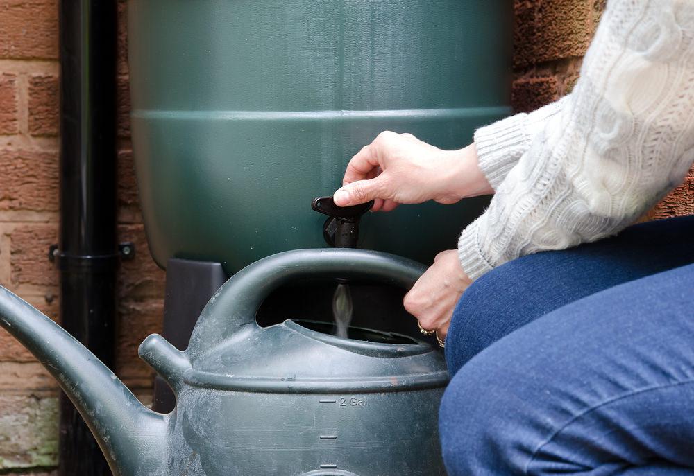 collecteur d'eau de pluie
